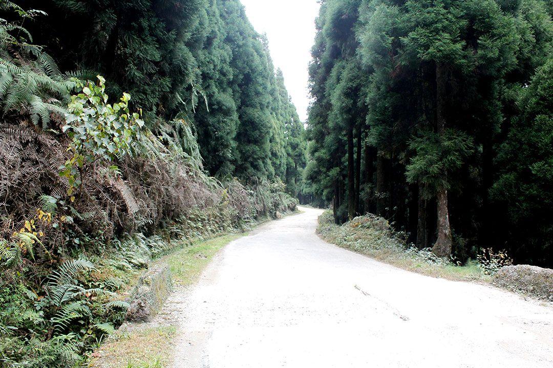 Plan a royal short road trip from Kolkata during this Pandemic